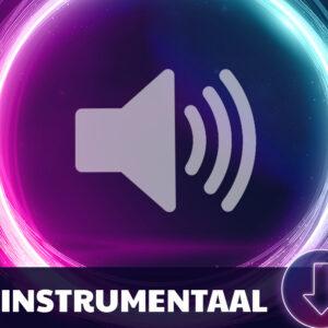 Instrumentale track mp3 (los)